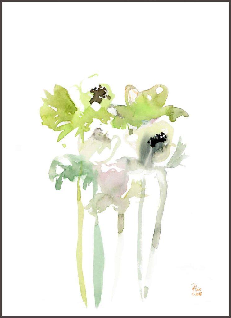 anemony-zielone